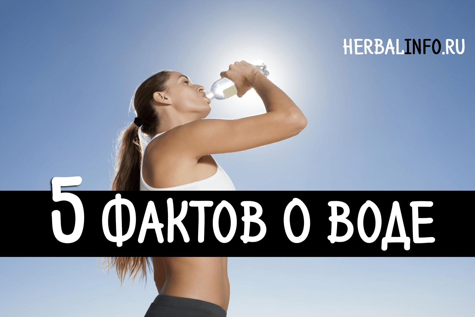 5 фактов о воде
