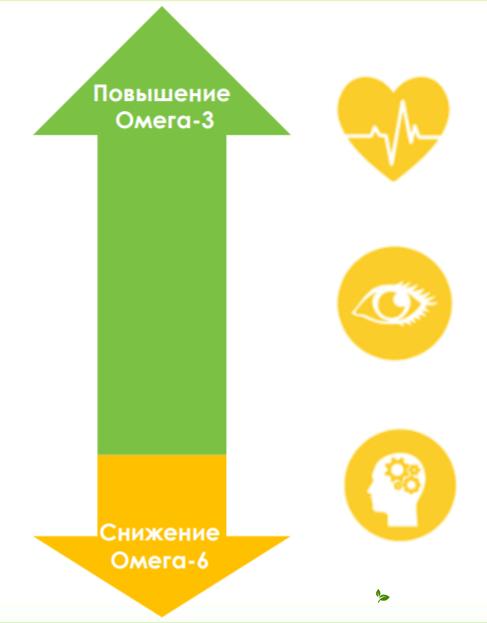 баланс жиров, полезные жиры, омега 3, омега 6, омега 9, полезные и вредные жиры, рыбий жир