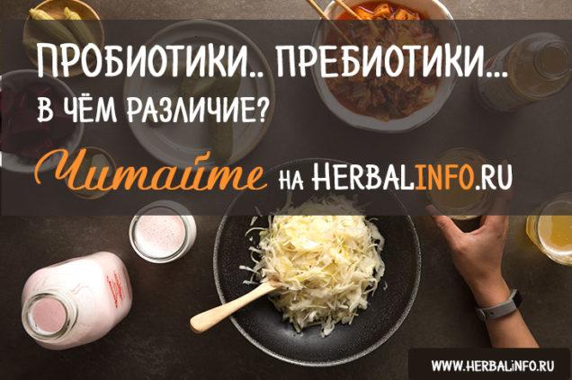 пробиотики и пребиотики отличия