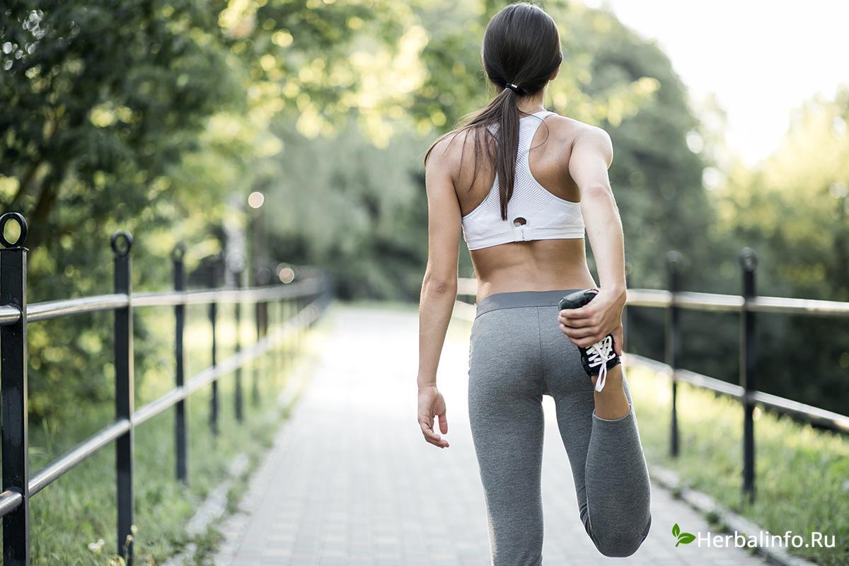 Занятия, упражнения, спорт, мышцы, труд, эффективность, адаптация, спортзал, растяжка, массажные процедуры