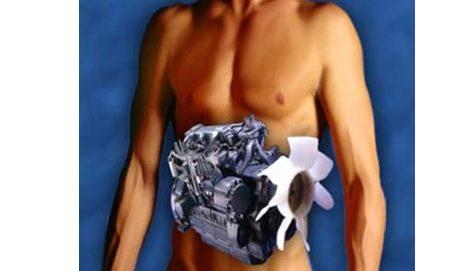 метаболизм и обмен веществ, как ускорить