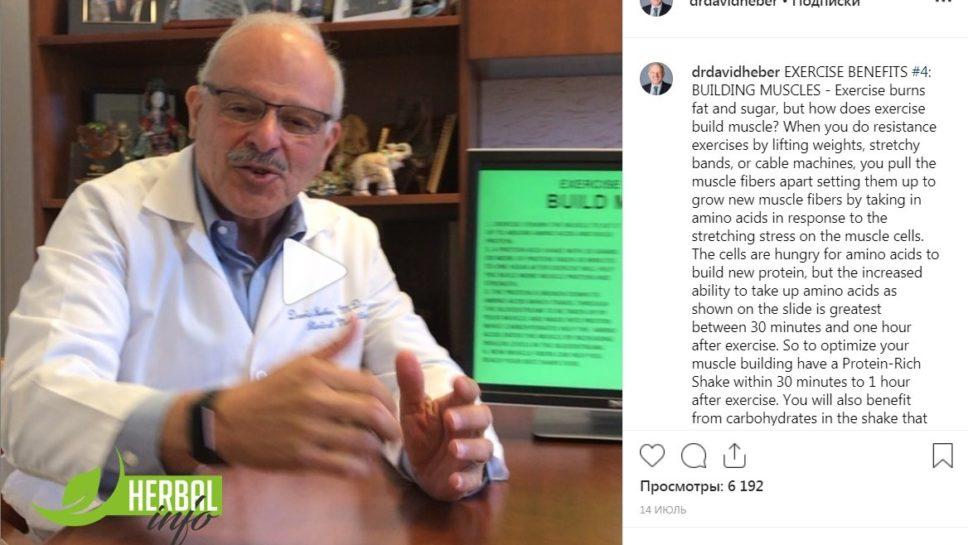 Доктор Дэвид Хибер: о наращивании мышц